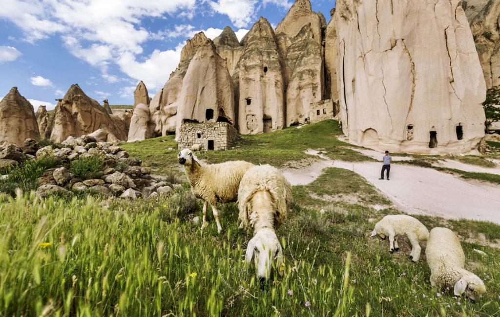 RenovIstanbul & Kapadokya